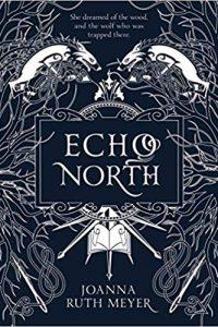 Carolyn F. Cushman Reviews <b>Echo North</b> by Joanna Ruth Meyer and <b>Cast in Oblivion</b> by Michelle Sagara