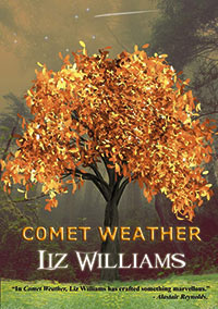Gary K. Wolfe Reviews <b>Comet Weather</b> by Liz Williams