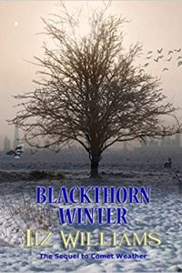 Gary K. Wolfe Reviews <b>Blackthorn Winter</b> by Liz Williams